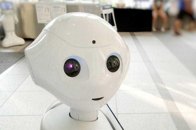 Antal i PIRXON promują Agencję Pracy Robotów